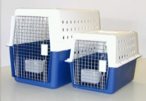 crate training your dog - plastic crate