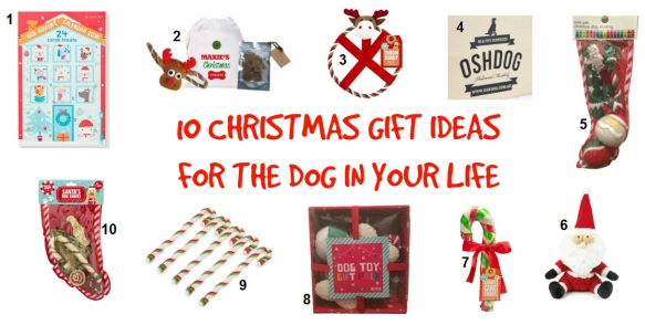 Christmas gift ideas for the dog in your life